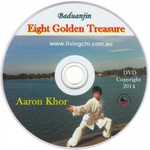 8-Treasures-DVD-cover